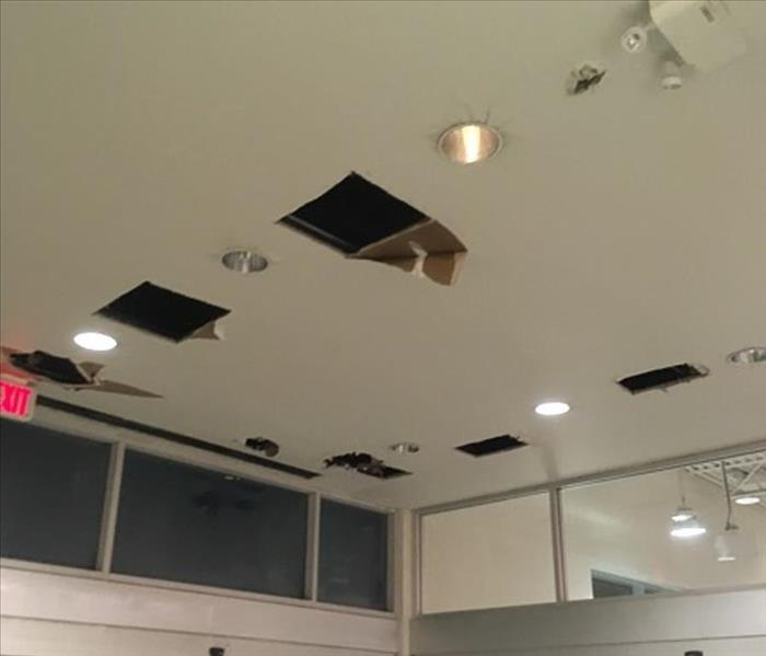 Sprinkler Head Burst in Calgary Store Before