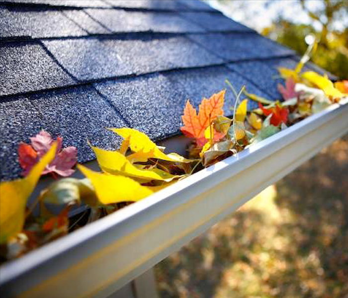 General Fall Home Maintenance Musts