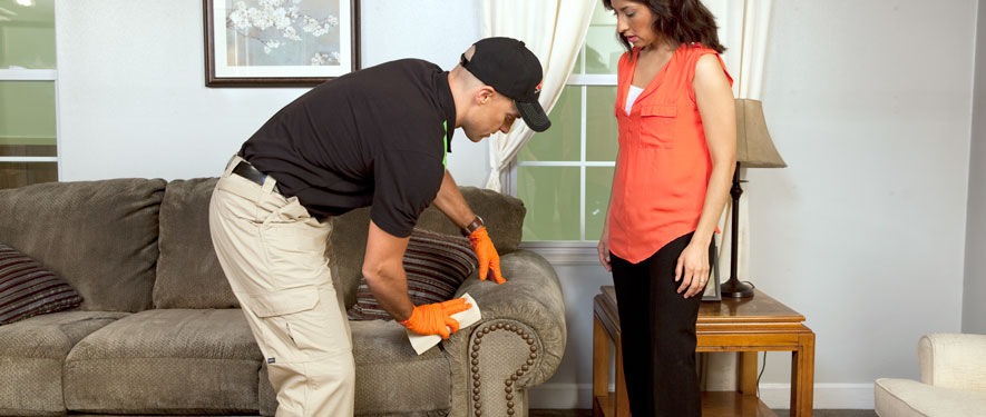Calgary, AB carpet upholstery cleaning