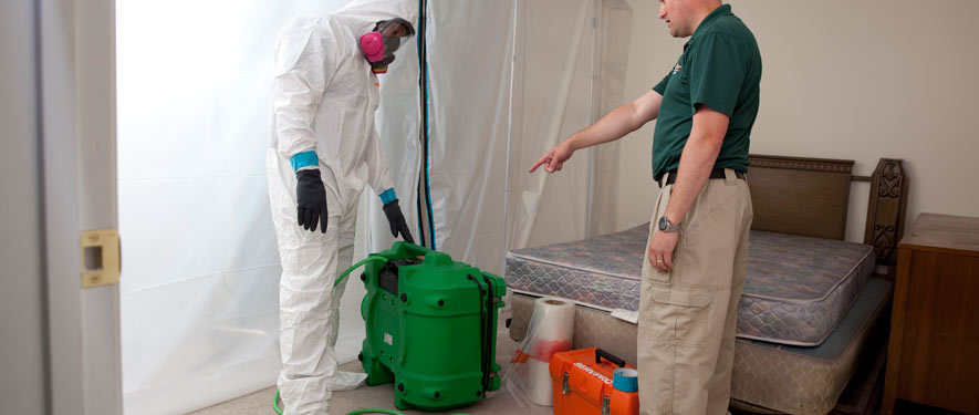 Calgary, AB mold removal process